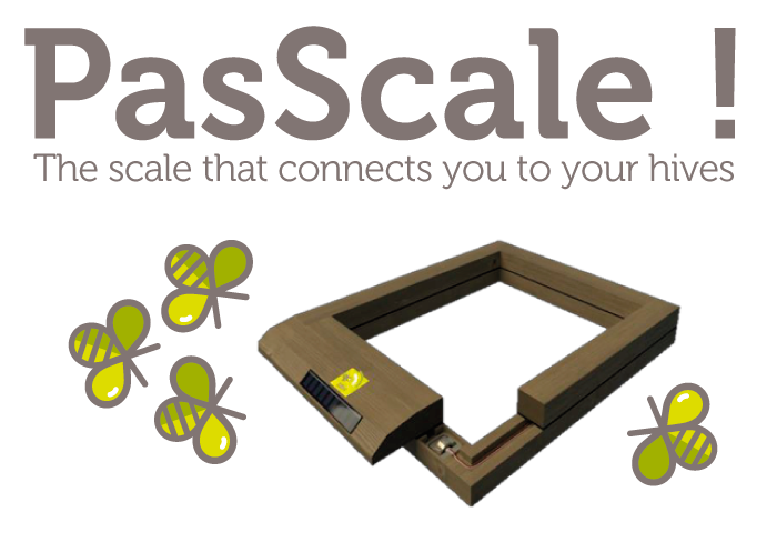 Scale PasScale by SBH
